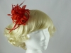 Flower and Biots Fascinator in Red