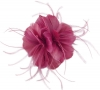 Failsworth Millinery Feather Fascinator in Rumba