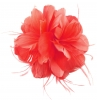 Failsworth Millinery Feather Fascinator in Salsa