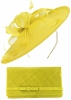 Max and Ellie Occasion Disc with Matching Large Occasion Bag in Yellow