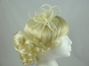 Swirl & Biots Fascinator on clip in Cream