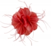 Failsworth Millinery Feather Fascinator in Tabasco