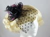 Top Hat with Veil Fascinator in Black and Pink