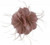 Failsworth Millinery Feather Fascinator in Woodrose