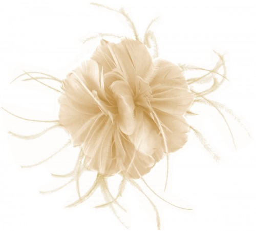 Failsworth Millinery Feather Fascinator in Birch