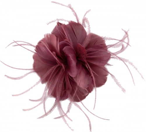 Failsworth Millinery Feather Fascinator