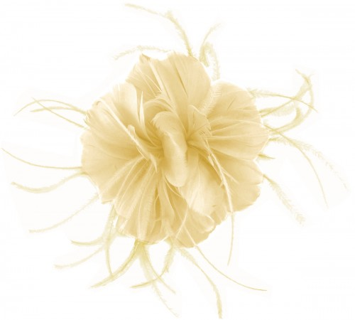 Failsworth Millinery Feather Fascinator in Champagne