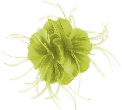 Failsworth Millinery Feather Fascinator in Lime