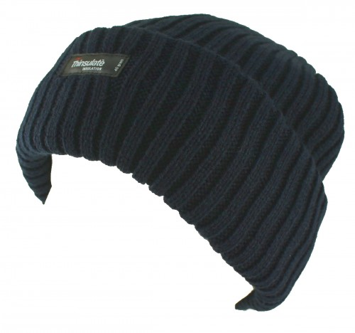 Thinsulate Beanie Chunky Ski Hat in Navy