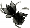 Failsworth Millinery Sinamay Diamante Clip Fascinator in Black