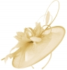 Failsworth Millinery Shaped Sinamay Disc in Blush