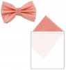 Max and Ellie Mens Bow Tie and Pocket Square Set in Bubblegum