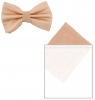 Max and Ellie Mens Bow Tie and Pocket Square Set in Candy
