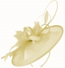 Failsworth Millinery Shaped Sinamay Disc in Champagne