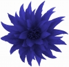 Aurora Collection Feather Fascinator in Cobalt