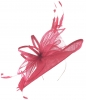 Max and Ellie Ascot Disc Headpiece in Flamingo