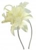 Aurora Collection Flower Aliceband Fascinator in Ivory