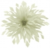 Aurora Collection Shaped Feather Fascinator in Ivory
