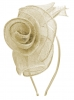 Molly and Rose Rose Aliceband Fascinator in Ivory