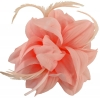 Aurora Collection Flower and Biots Fascinator in Light Pink