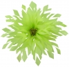 Aurora Collection Shaped Feather Fascinator in Lime