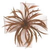 Molly and Rose Biots and Beads Aliceband Fascinator in Mocha