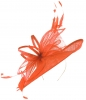 Max and Ellie Ascot Disc Headpiece in Orange