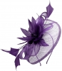 Elegance Collection Events Headpiece in Purple