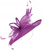 Max and Ellie Ascot Disc Headpiece in Purple