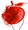 Aurora Collection Rose and Feather Disc in Red