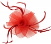 Aurora Collection Swirl & Biots Fascinator on clip in Red