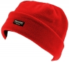 SSP Hats Kids Thinsulate Beanie in Red