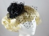 Top Hat with Veil Fascinator in Black
